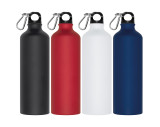 800ml Drinking bottle with snap hook